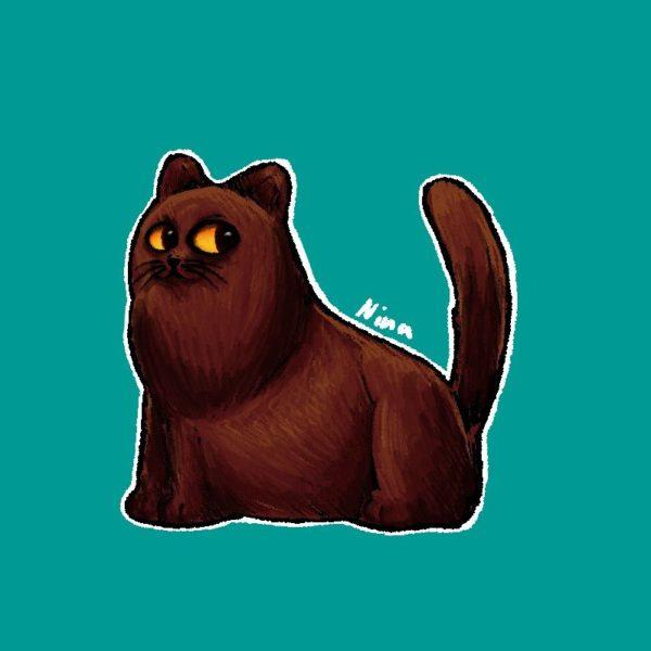 Braune Katze - 2018